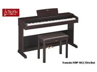 Có nên mua đàn Piano điện Yamaha YDP-103 không ?