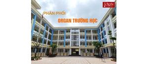 Lắp đặt đàn Organ Yamaha E373 cho trường tiểu học