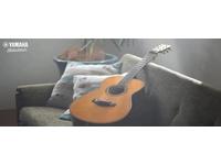 Những điều cần biết nếu bạn muốn học chơi đàn guitar Yamaha