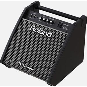 Amplifier Guitar V-Drum Roland PM-100