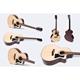Đàn Guitar Acoustic GA-14HL 1