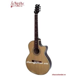 Đàn Guitar Acoustic GA-18HL