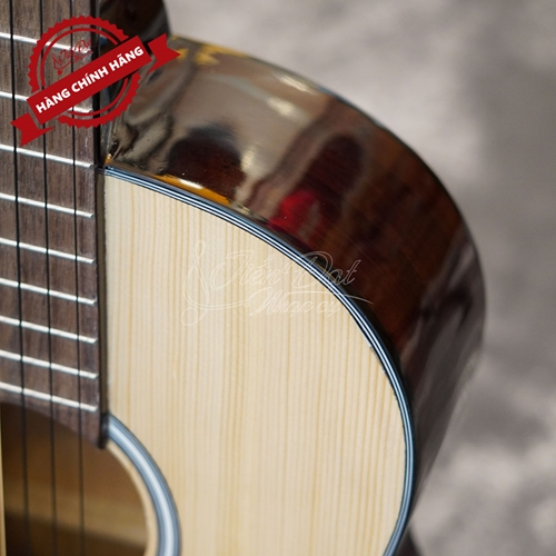 Đàn Classic Guitar GC- 10EV 16