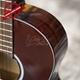 Đàn Classic Guitar GC- 10EV 20