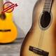 Đàn Classic Guitar GC- 10EV 8