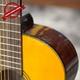 Đàn Classic Guitar GC- 10EV 12