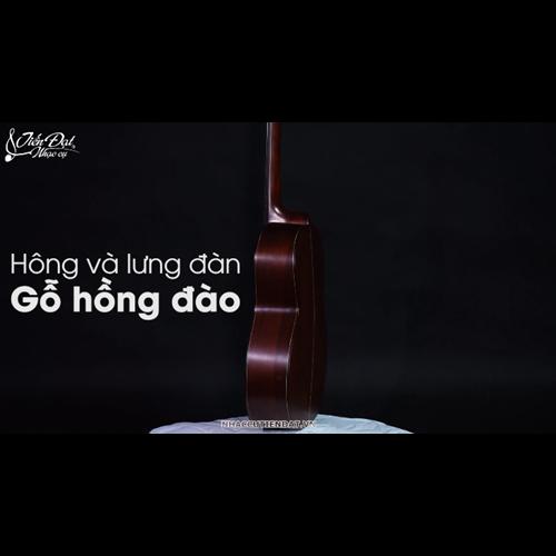Đàn Classic Guitar GC 18HV 11