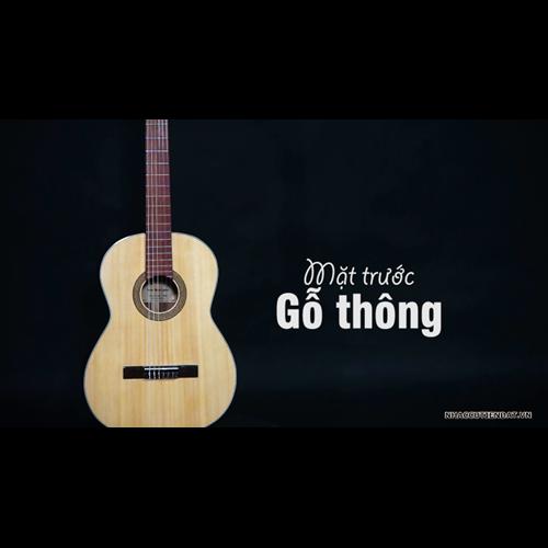 Đàn Guitar Classic GC-14HV 4