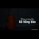 Đàn Guitar Classic GC-14HV 14