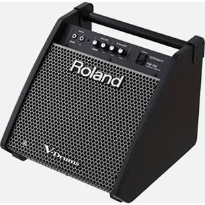Amplifier Guitar V-Drum Roland PM-100