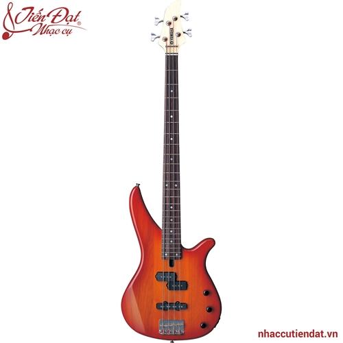Đàn Electric guitar RBX170 màu hổ phách