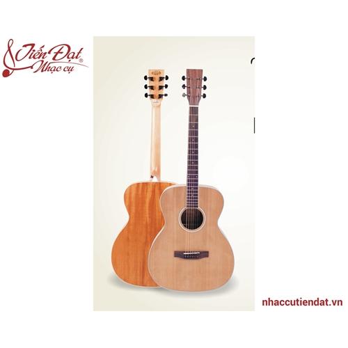 Đàn Guitar Acousitc TOM 423