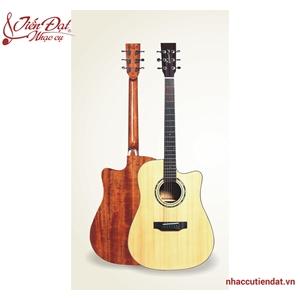 Đàn Guitar Acousitc Takavood TD610C NA