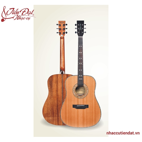Đàn Guitar Acousitc Takavood TOM 790NA