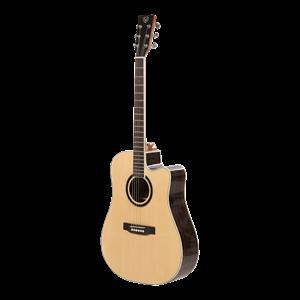 Đàn Guitar Acoustic VALOTE VA-202W