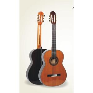 Đàn Guitar Classic VALOTE VC-302FB