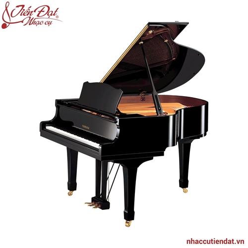 Đàn Piano Yamaha C1X PE