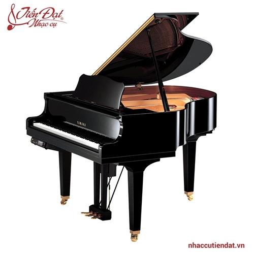 Đàn Piano Yamaha DGB1KE3 PE