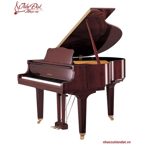 Đàn Piano Yamaha GB1K PM