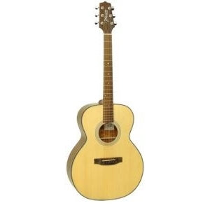 Đàn guitar Acoustic Takamine D2N NAT